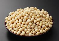 写真:大豆